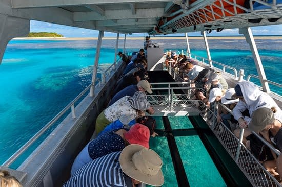 Lady Musgrave Island - Lady Musgrave Experience
