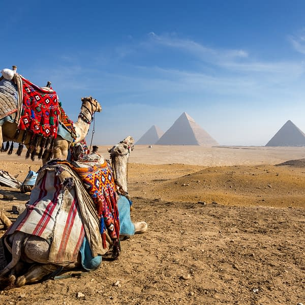 - Pyramid Camel Ride - Lady Egypt Tours - Book Now